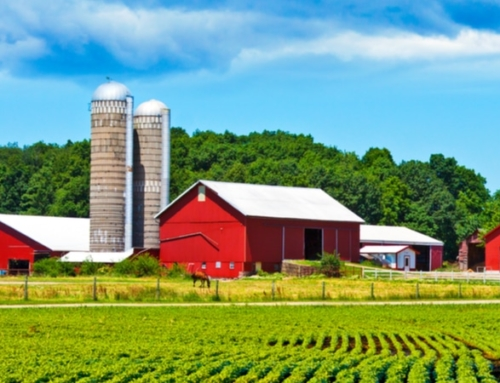 How to Sell a Farm Property in 2020
